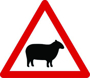 Sheep likely ahead triangle sign