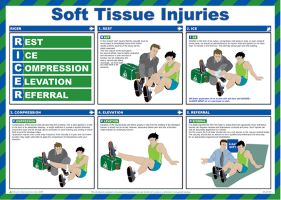 Soft Tissues Injuries Poster