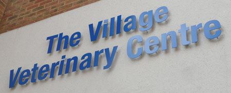 Village Vets Cut Out Stand Off Letters Sign